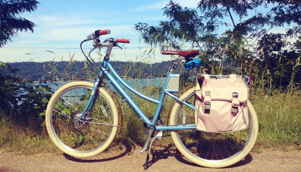 Blue e-bike with pink panniers