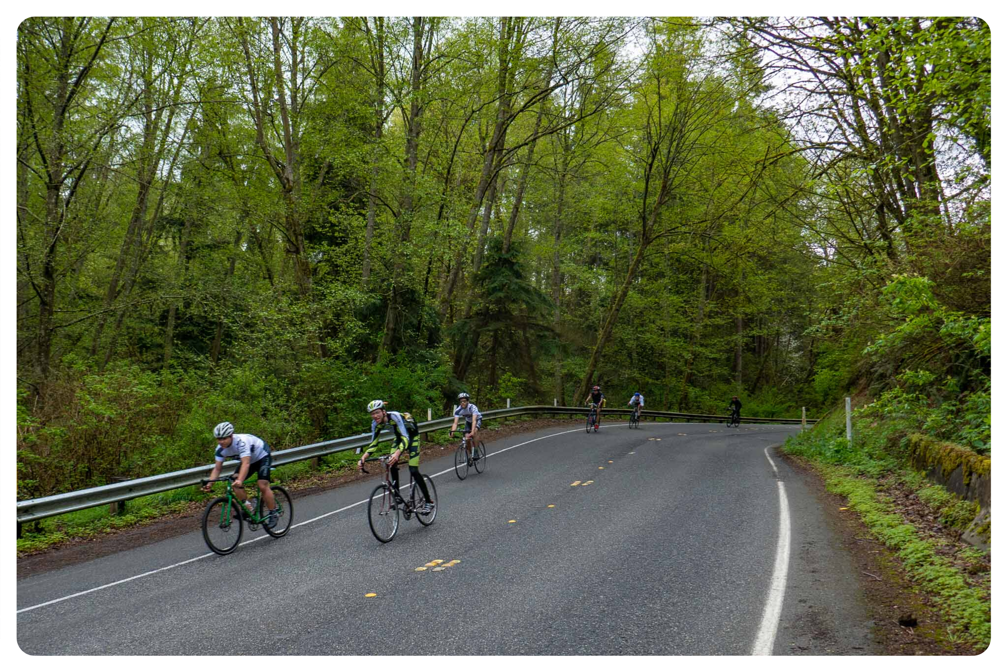 Several riders cruise along a paved road in a forested area