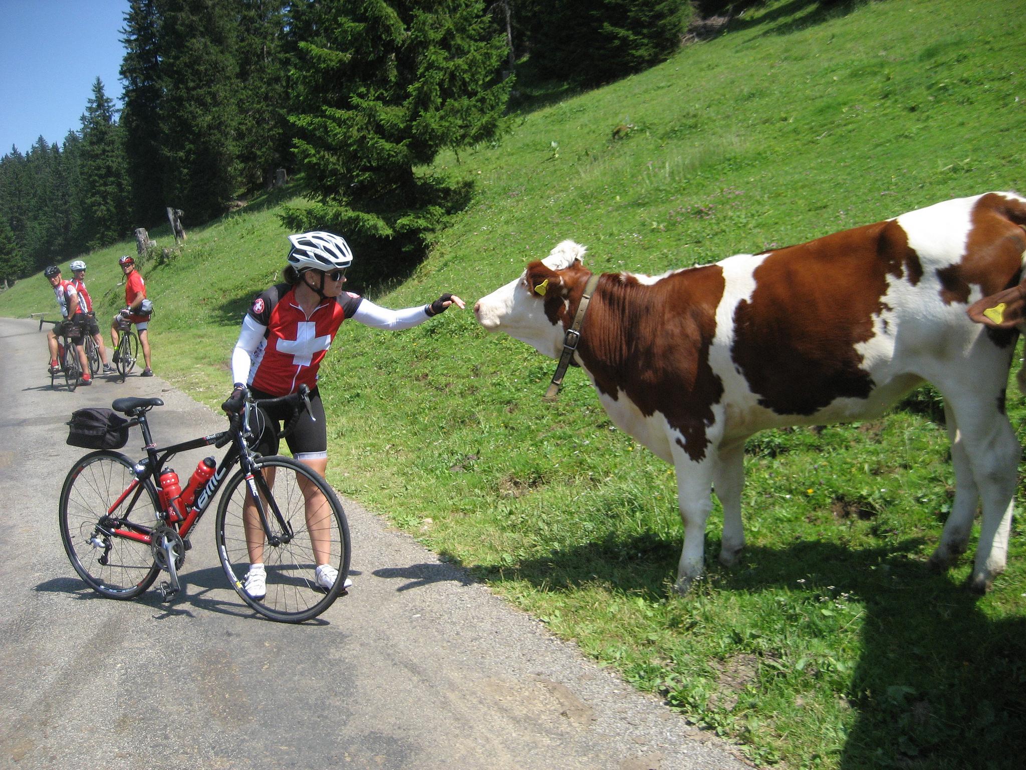 Touring Switzerland